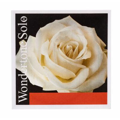 Hegedűhúr Pirastro Wondertone Solo E ezüst