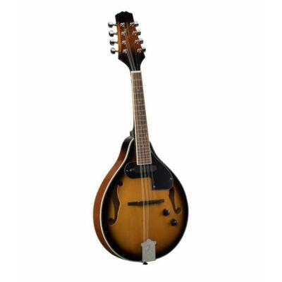 Bluegrass mandolin, (luc fedlap) tartozék puhatokkal